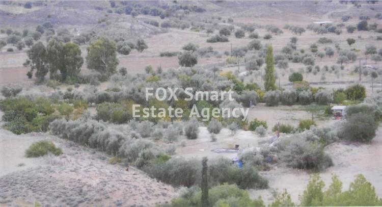 Agricultural Land 8,404sq.m in Alampra, Nicosia