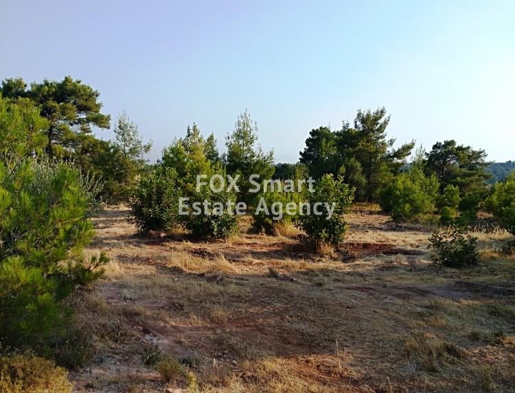 Land in Dora, Limassol