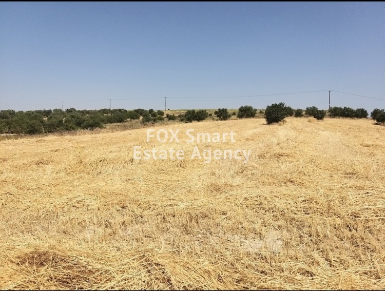 For Sale 13,713sq.m Agricultural Land in Alambra suitable for investment
