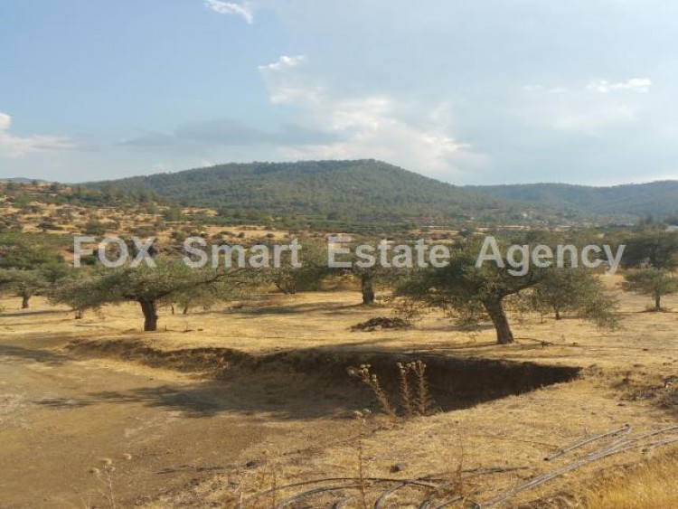 Agricultural Land in Kalo chorio orinis, Kalo Chorio Oreinis, Nicosia