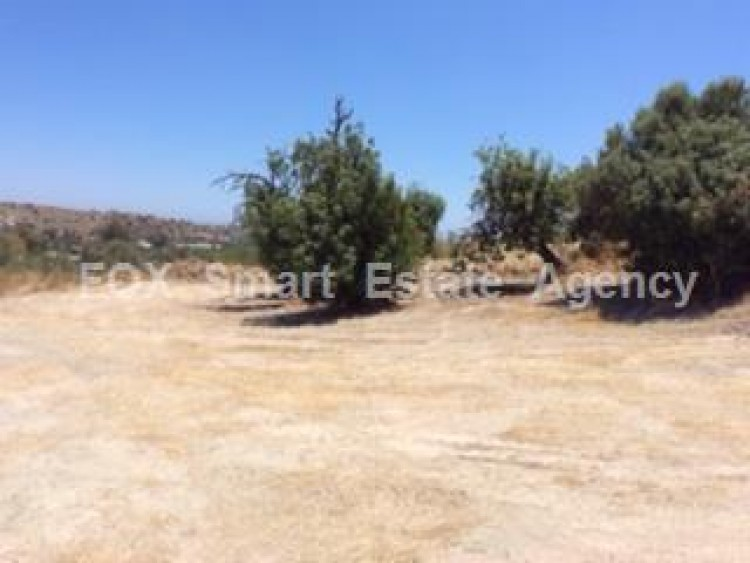 Agricultural Land in Kalavasos, Larnaca