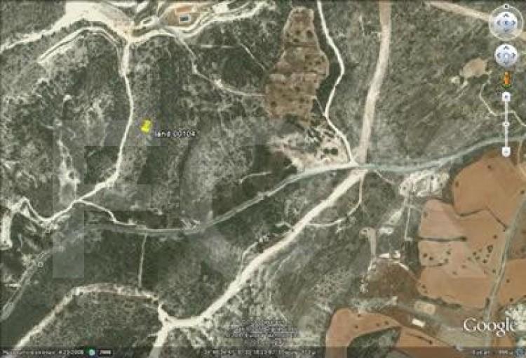 Forest Land in Kalavasos, Larnaca