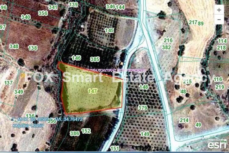 Agricultural Land in Pyrgos lemesou, Limassol