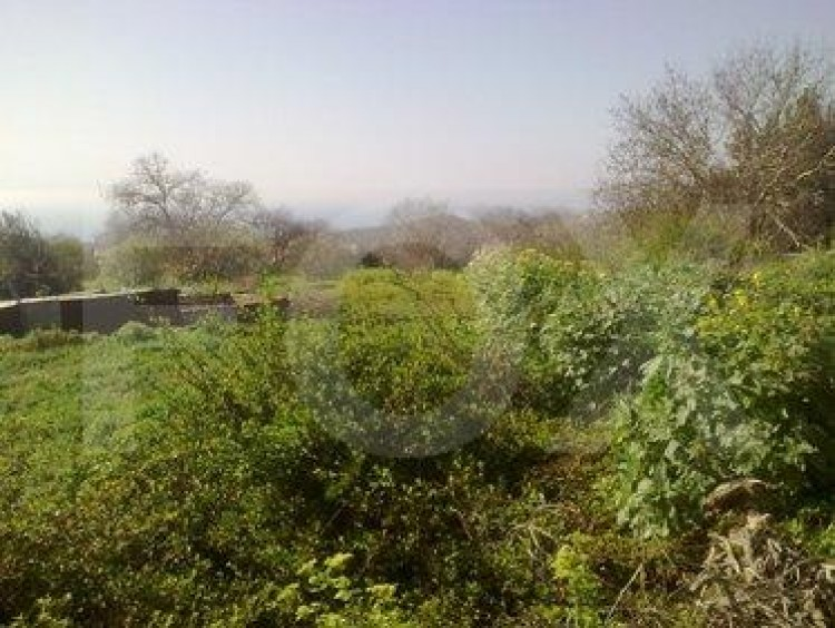 Plot in Tala, Paphos