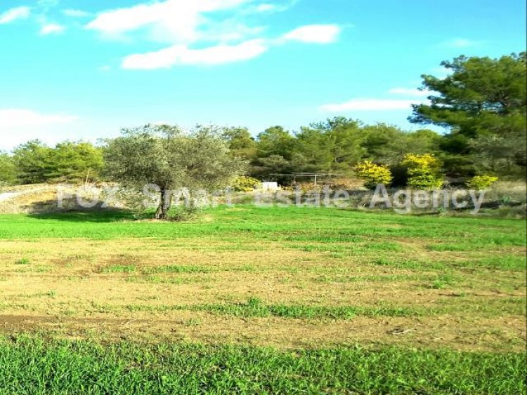 Residential Land 5,685sq.m in Sia, Nicosia